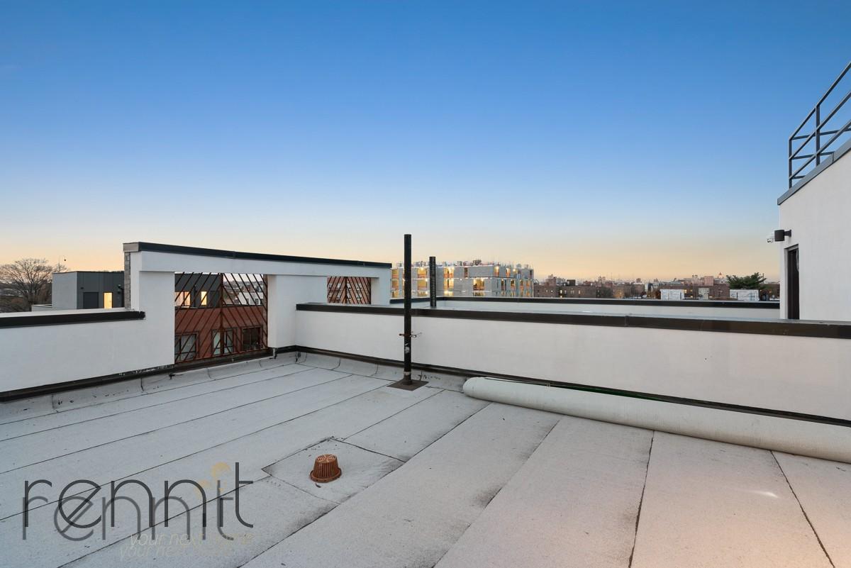 1509 New York Avenue, Apt 1B Image 14