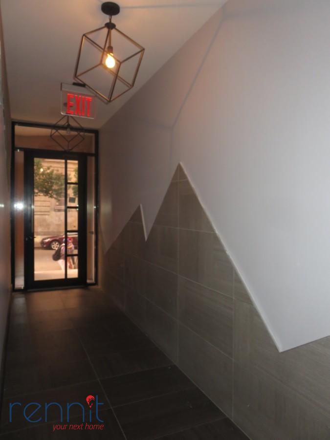 137 Albany Ave, Apt 1F Image 16