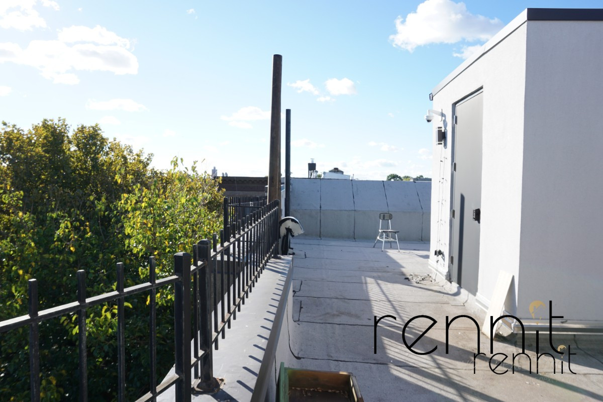 865 GREENE AVE., Apt 2A Image 17