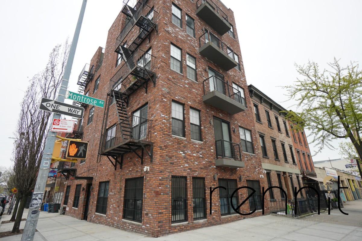 196 Montrose Ave, Apt 3B Image 18